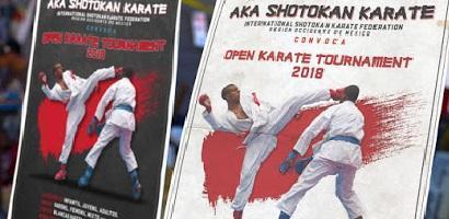 karate2 abierto
