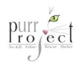 Proyecto Purr