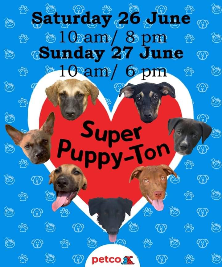 We will be at Petco, <br />Dogs come from the shelter A dog's New life<br />Cats come from the shelter Purr Project<br />If you have any questions please go to <br />Adopt a pet PV fb
